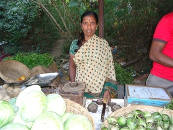 Sharada Hanumante lost her husband a few years ago. Sheis supporting her family by selling tomatoes, onions. potatoes etc. at a vegetable shop in the market, with a Rang De loan. Image Source: rangde.org