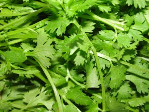 5 Easily Available Herbs To Use To Elevate The Flavor Of Any Dish