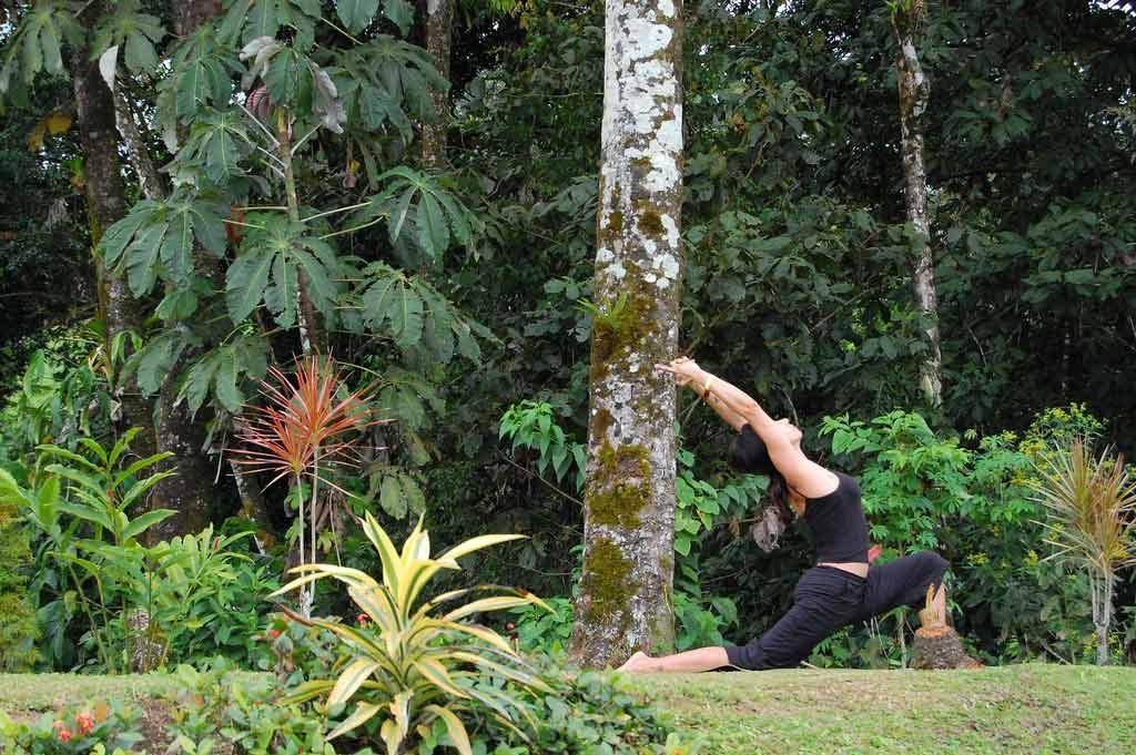 park-yoga