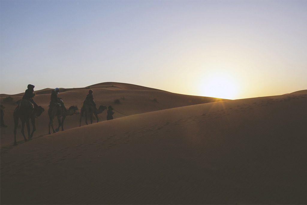 desert-travel